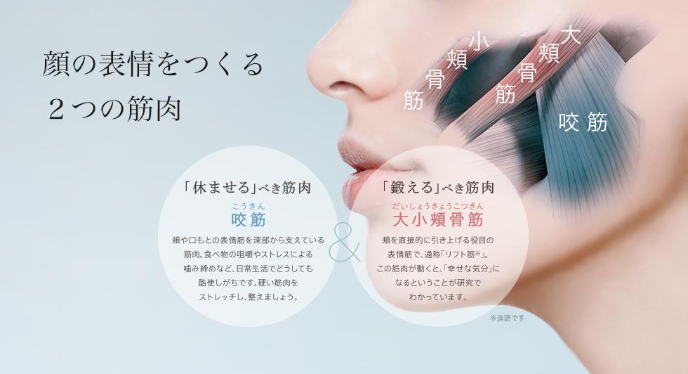 顔の表情をつくる2つの表情筋 大小頬骨筋(リフト筋※)/咬筋