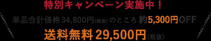 特別キャンペーン実施中!単品合計価格34,800円(税抜)のところ 約5,300円OFF 送料無料 29,500円(税抜)